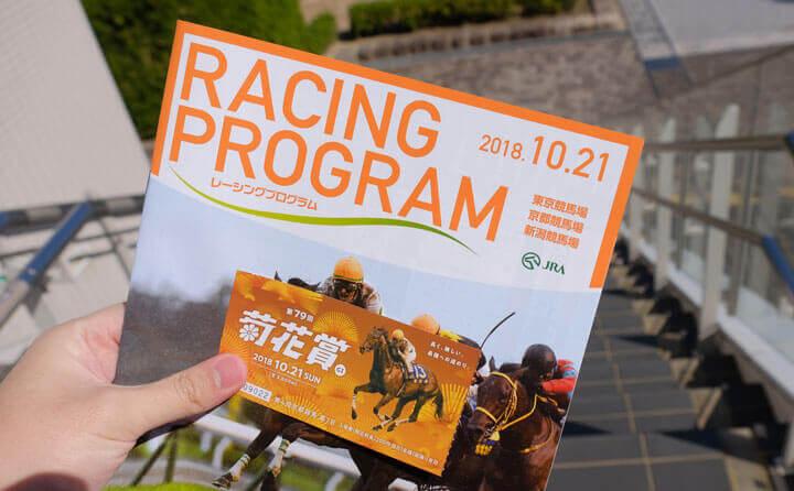 レーシングプログラムで競馬予想